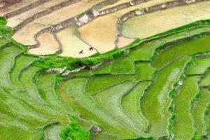 1728x1152_Bhutan-Reisfelder